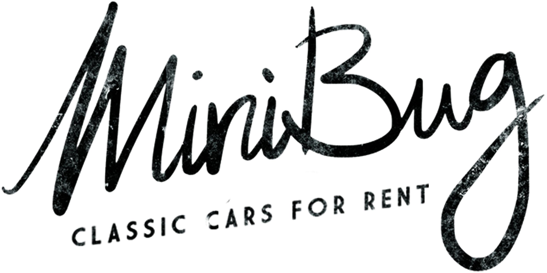Minibug